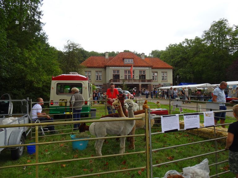 zomer fair